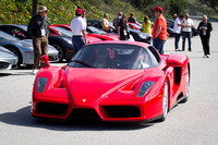 Ferrari Enzo in the rally group from Ferrari of Silicon Valley