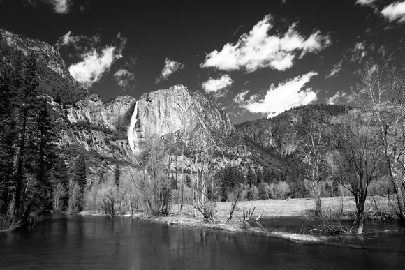 Upper Yosemite Falls viewed from the valley floor