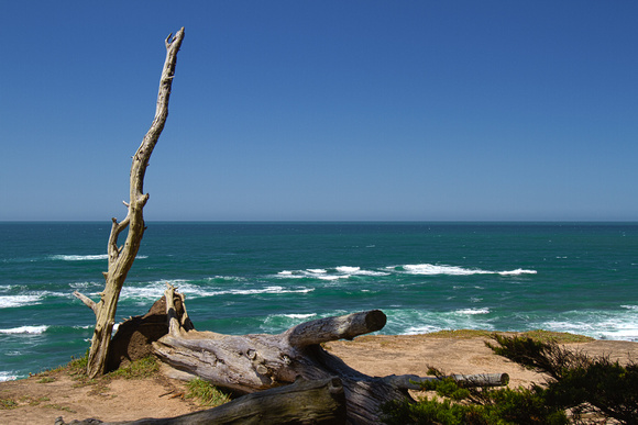 View at the Fitzgerald Marine Reserve