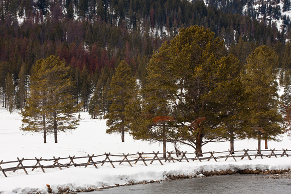 Winter scene along the Gallatin River